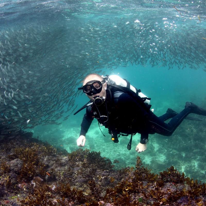 Klub Obieżyświatów - nurkowanie na FIlipinach